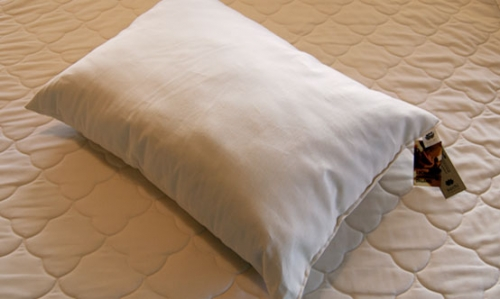 Cotton Pillow