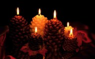 Pine Cone Shaped Beeswax Candle with Organic Wick