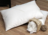 Cotton_Pillow____4bca0ceb39f21.jpg