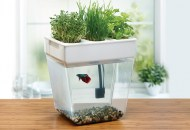 Herb Aquaponics Kit