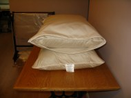 Organic Dust mite Pillow encasement